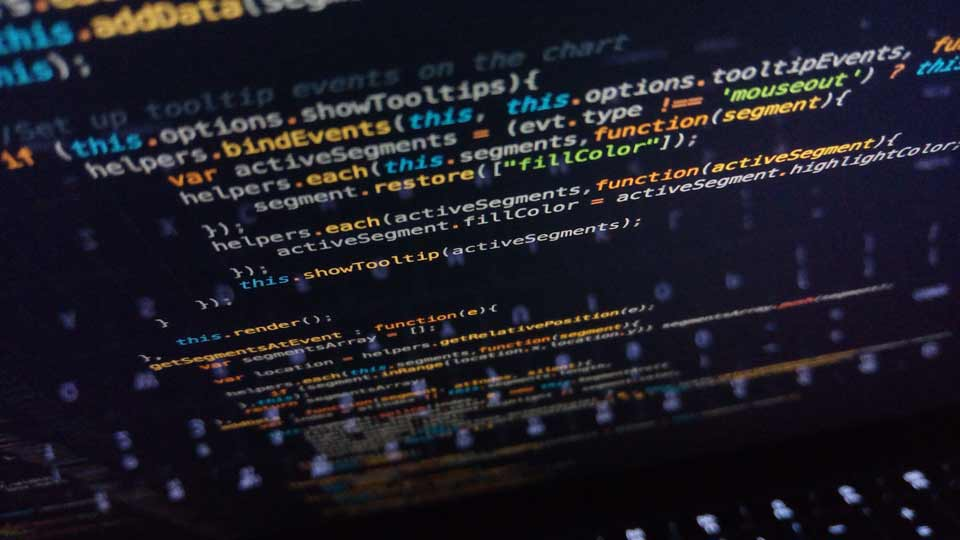 how to find the right wordpress developer