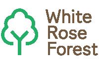 White rose forest